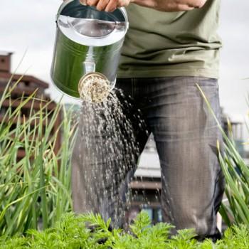 servicos-de-jardinagem-500